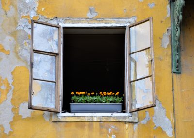 An Old Town Window